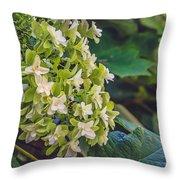 Philipsburg Manor - White Blossom Throw Pillow