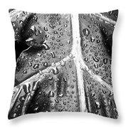Philodendron Rain - Bw Throw Pillow