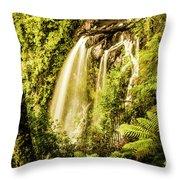 Philosopher Falls, Western Tasmania Throw Pillow
