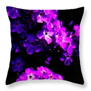 Phlox 1 Throw Pillow