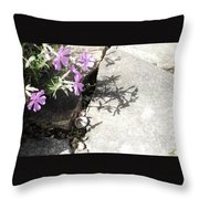 Phlox And Shadow Throw Pillow