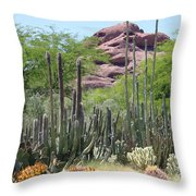 Phoenix Botanical Garden Throw Pillow by Carol Groenen