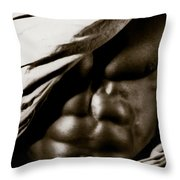 Photo 26 Throw Pillow