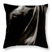 Photo 7 Throw Pillow