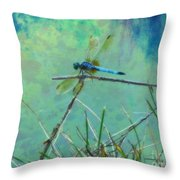 Photo Painted Dragonfly Throw Pillow