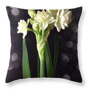 Photograph Of Narcissus Erlicheer A White Flower Throw Pillow