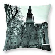 Photographt Throw Pillow
