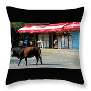 Phu My 2 Throw Pillow
