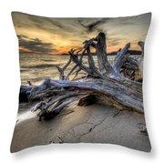 Pic Driftwood Throw Pillow