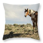 Picasso Looks Over Sand Wash Throw Pillow