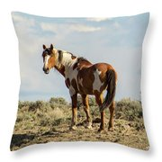 Picasso On The Horizon Throw Pillow