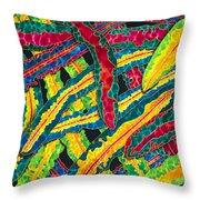 Picasso Paintbrush Croton Throw Pillow