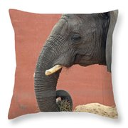 Pick The Lock On Your Heart Throw Pillow