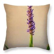 Pickerel Rush Pond Flower Painting Throw Pillow