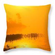 Pickerel Sunrise Throw Pillow