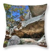 Pickle Spring Sandstone Throw Pillow