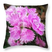 Picky Pick  Throw Pillow