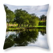Picnic Area In The Marnel River IIi Throw Pillow