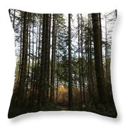Picnic In The Afternoon Throw Pillow