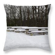 Picnic In The Park Throw Pillow
