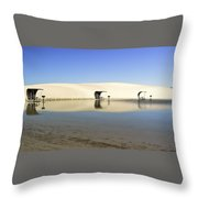 Picnic Reflections Two Throw Pillow