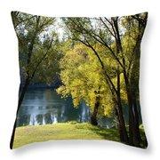 Picnic Spot On Spokane River Throw Pillow