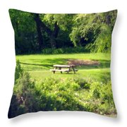 Picnic Table Throw Pillow