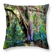 Picnic Time In Florida Throw Pillow