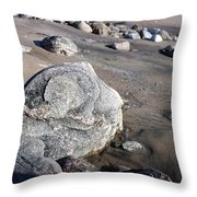 Picture 4 Throw Pillow