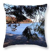 Picture 5 Throw Pillow
