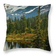 Picture Lake Vista Throw Pillow