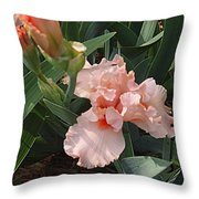 Picture Peach Throw Pillow