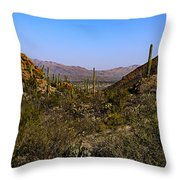Picture Rocks 24 Throw Pillow