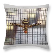 Picture Winged Bee Fly On Screen     Spring      Indiana Throw Pillow