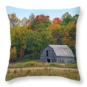 Picturesque.. Throw Pillow
