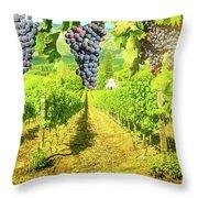 Picturesque Vineyard At Sunset Throw Pillow