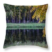 Pieceful Moments Throw Pillow
