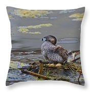 Pied-billed Grebe On Eggs Throw Pillow