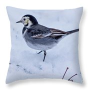 Pied Wagtail In The Snow Throw Pillow