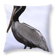 Pier Pelican Ponce Inlet Throw Pillow