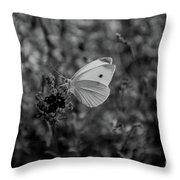 Pieris Rapae Throw Pillow