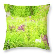 Piet Oudolf Garden At Tbg Throw Pillow