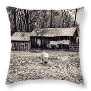Pig Farm Lot B Throw Pillow
