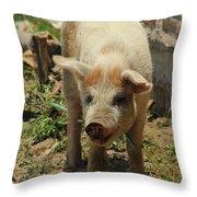 Pig On A Farm Throw Pillow