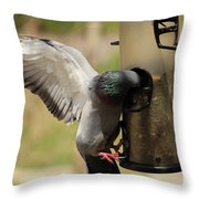 Pigeon And Feeder Wings Spread Throw Pillow