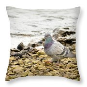 Pigeon Close To The River Throw Pillow