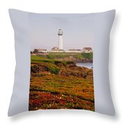 Pigeon Point Ca Throw Pillow