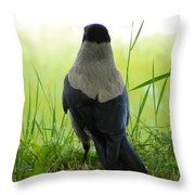 Pigeon With An Attitude Throw Pillow