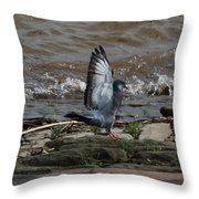 Pigeon With Its Wings Up Throw Pillow