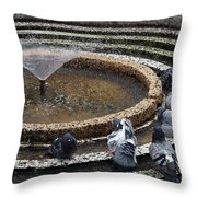 Pigeons Are In The Fountain Refreshes Throw Pillow